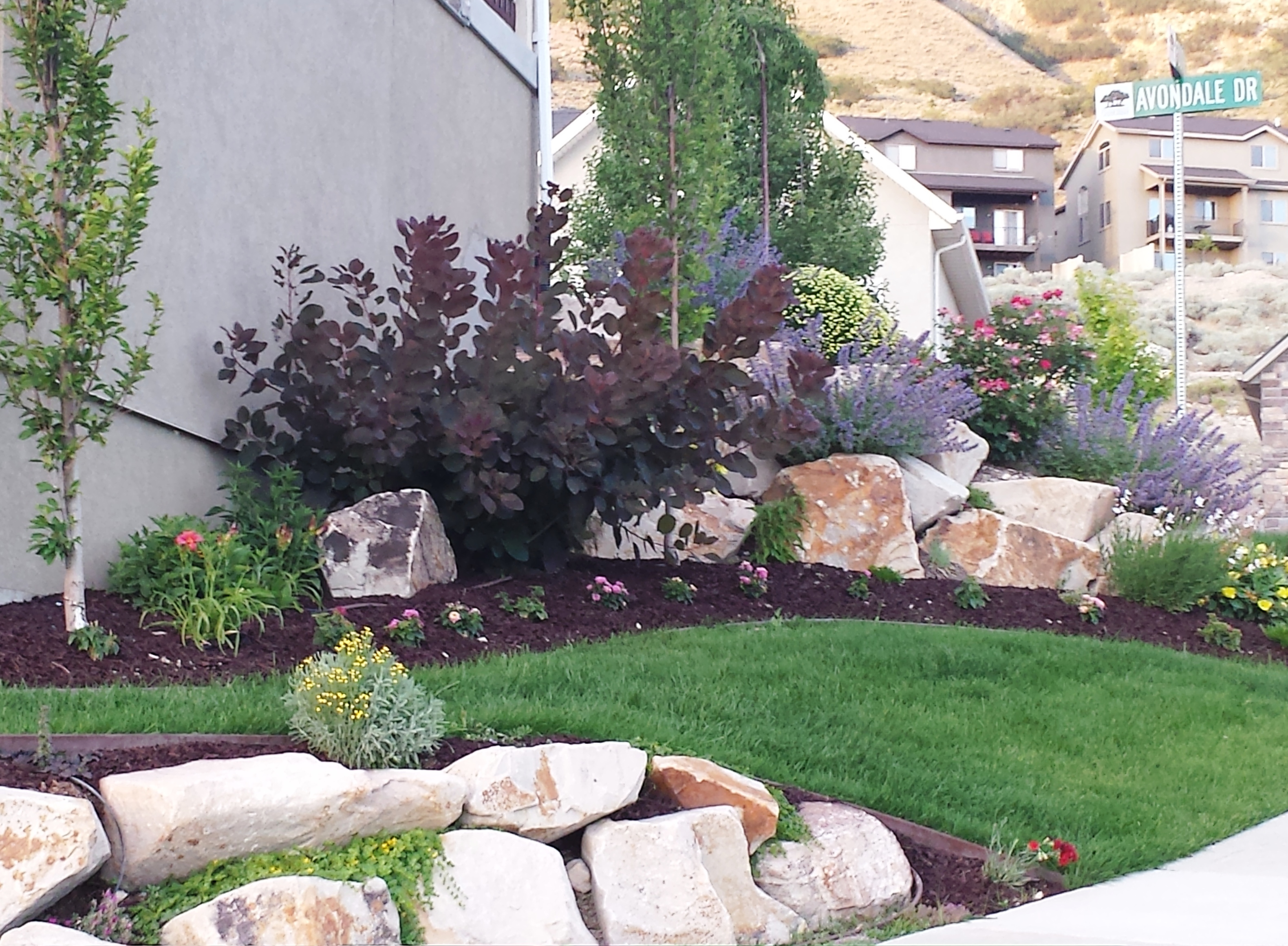 The Drussel Family - Yard of the Month - June 2013